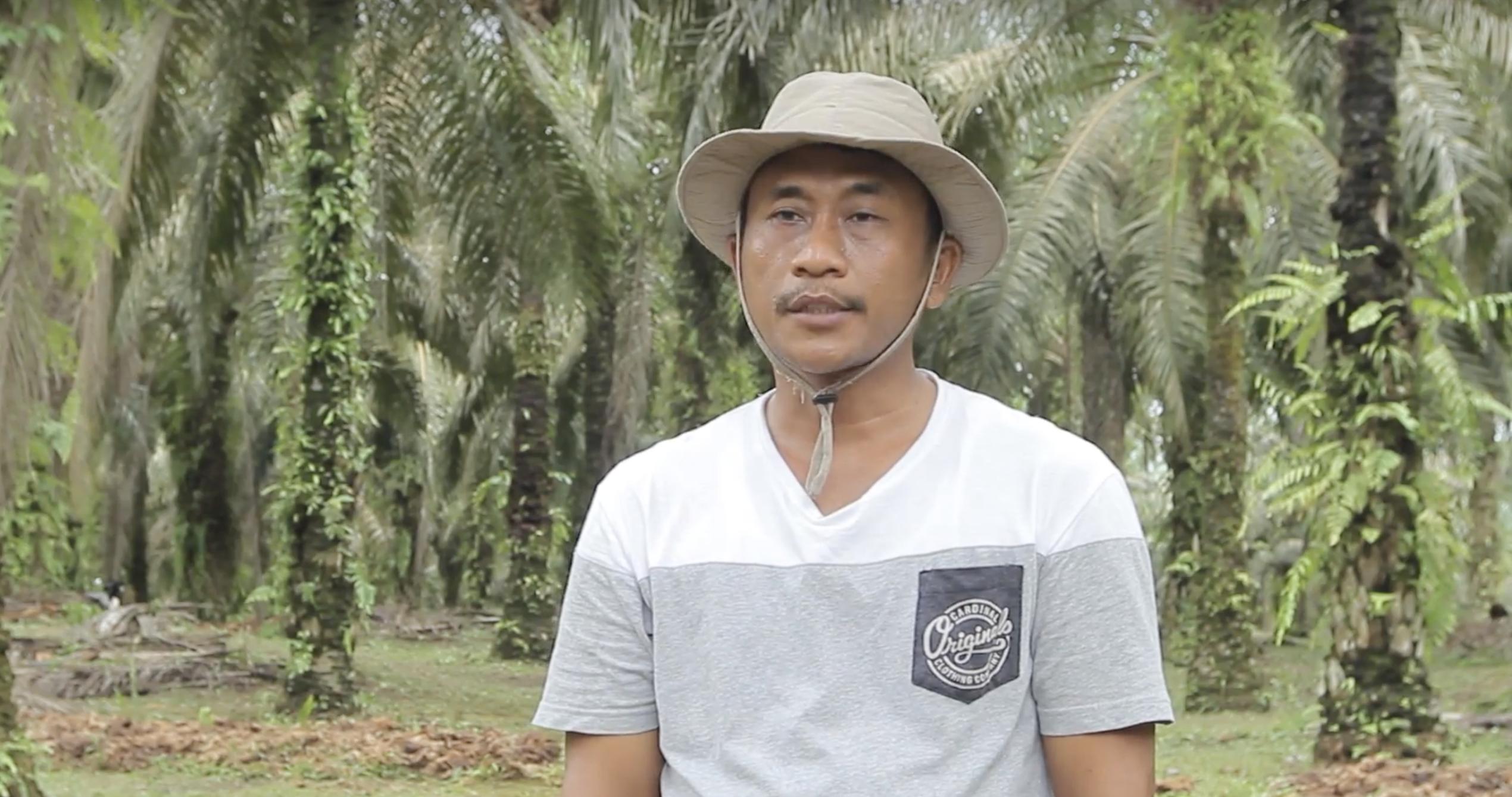 When an oil palm farmer finds a better way